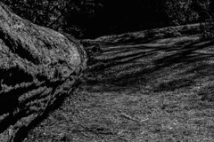 Harcourt Arboretum (akatsoulis) Tags: landscape oxforduniversity countryside walking sunnyday 50mm14g d5300 oxford nikon arboretum harcourtarboretum
