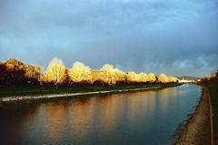 Firenze ed il suo fiume (michele.palombi) Tags: florence arno film 35mm 400asa sunset riflessi negativo colore tuscany