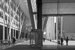 Toronto 2018_017 (c a r a p i e s) Tags: carapies cityscapes 2018 nikondf canada ontario toronto allenlambertgalleria architecture arquitectura bw blackwhite blancoynegro fotografiaurbana urbanphotography urban urbvanidad urbvanity urbanphoto streetphoto streetlife streetphotography