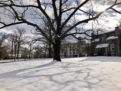 """""""Time is a game played beautifully by children."""" ―Heraclitus ❄️ ☃️ ❄️ (anokarina) Tags: appleiphone8 forttotten pleasanthill rockcreekcemetery stpaulsrockcreek instagram nofilter graveyard cemetery tombstones graves winter snow tree branches sunlight sunshine backlight shadows dcist"""