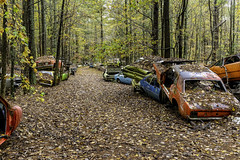 Junk row in the fall (Alan Vernon.) Tags: georgia sonya6300 southcar old relic rusty junk row road path fall autumn leaves trees colorful colors peaceful landscape relaxing relics rusting rust historic cars automobiles abandoned decay decaying yesteryear debris
