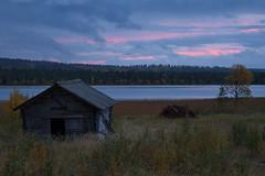 Lapland_Day2_Muonio_20180911_IMGS4791_s (Andrew-Holloway) Tags: lapland muonio autumn torassieppi