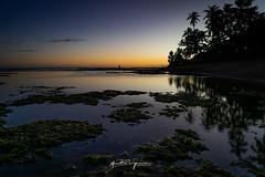 Por do sol na praia do forte (André.Siqueira) Tags: praia do forte bahia luz natural céu sky reflexo água mar natureza por sol