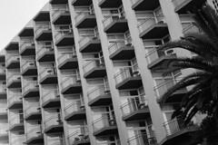 (analogicmoment) Tags: 35mm analogphotography filmphotography blackandwhite bw kodaktrix400 rangefinders contaxt kodakhc110b architecture keepfilmalive ishootfilm buyfilmnotmegapixels filmisnotdead