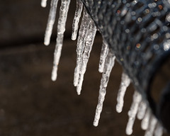 Ice Fingers (Cheryl3001) Tags: ice icicle frozen fujifilm xt2 50140mm winter