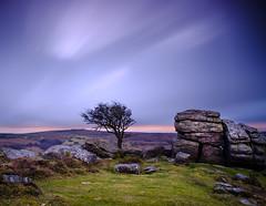 Dartmoor Big Skies (Graeme Tozer) Tags: devon dartmoor tor sky tree longexposure uk rock