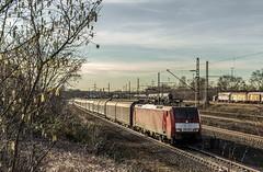 26_2019_02_14_Gelsenkirchen_Bismarck_6189_083_DB_mit_H_Wagen ➡️ Herne_Abzw_Crange (ruhrpott.sprinter) Tags: ruhrpott sprinter deutschland germany allmangne nrw ruhrgebiet gelsenkirchen lokomotive locomotives eisenbahn railroad rail zug train reisezug passenger güter cargo freight fret bismarck db ccw de efm eh eloc hctor rpool pkpc spag 323 0077 0275 0632 1225 1265 1266 1275 3294 6145 6156 6185 6186 6189 6241 9123 9124 captrain ecr ell hectorrail lotos setg spitzke museumszug schrottzug logo natur outdoor graffiti wildgänse flugzeug sonnenuntergang airbus 380
