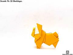 Seconde Vie A5 Bouledogue - Barth Dunkan. (Magic Fingaz) Tags: anjing barthdunkan chien origamibulldog dog ecorigami hond hund köpek origami origamidog paperfolding perro pies bulldog 犬 狗