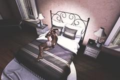Italian Night (JohnnyWalker29 Resident) Tags: secondlife second life sl virtual world sleep sleeping dream night italian italy bedroom bed room softly love loving living hug hugs belleza maitreya slink signature gianni lara freya venus tmp adams omega mesh bento pose animation couple together romantic
