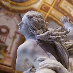 La Morbidezza del Marmo - Ratto di Proserpina - Gian Lorenzo Bernini (Claudio De Rossi) Tags: museo galleria borghese bernini sculture marmo roma italia ratto proserpina