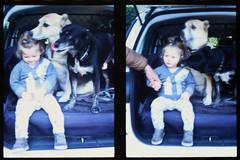 _RAK9727 (Daniele Pisani) Tags: olympus pen velvia50 costanza susanna baby sitter neve cani lea dylan macchina giardino half frame