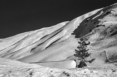 Tschuggen (schoeband) Tags: tschuggen flüelapass davos graubünden schweiz suisse svizra svizzera switzerland rolleiretro80s film caffenolc homebrewed bw winter snow canonet canonetgiiiql17