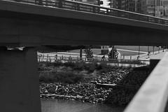 Converging (Jacques P Raymond) Tags: roads bike city concrete river bridge ramp bw blackandwhite monochrome calgary alberta canada