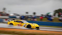 8S4A0844 (rickstratman26) Tags: sebring imsa raceway racecar racecars car cars racing motorsport motorsports canon 7d2 7dii panning chevrolet chevy corvette c7r