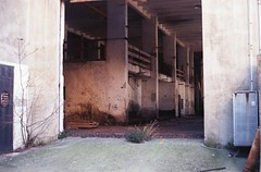 Società Elettrica Riviera di Ponente. (GiannLui) Tags: società elettrica riviera di ponente societàelettricarivieradiponente lavagnola exenelsavona ex enel exenel savona