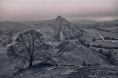 The Dragon's back. Peak District (seantindale) Tags: blackandwhite bw landscape fog mist omdem5markii olympus peakdistrict tree hills monochrome