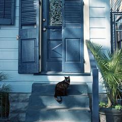 French Quarter (Antonin Cosset) Tags: zenza bronica zenzanon zenzanons 80mm 120 28 6x6 mediumformat neworleans louisiana kodakportra160vc kodak portra 160 160vc vividcolors