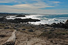 Pacific Grove, California, Christmas 2018 (Northwest Lovers) Tags: california pacificgrove 17miledrive highway1