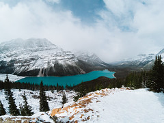 Peyto Lake (Top KM) Tags: canada british columbia alberta banff bc landscape rockies rocky mountains mountain lake nature water forest park range national travel explore exploration peyto glacier snow winter outdoors canadian emerald scenic