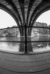 Durham City. (CWhatPhotos) Tags: cwhatphotos camera photographs photograph pics pictures pic picture image images foto fotos photography artistic that have which contain flickr olympus omd em10 mk ll ii mzuiko 8mm prime fisheye fish eye lens durham north east england uk river wear city centre water