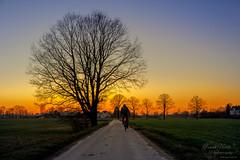 Eben noch Winter.... und dann schon Sommer?! (Frank Heldt Photography) Tags: kamen nordrheinwestfalen deutschland de frühling sommer sonnenuntergang sonne foto fotografie frankheldt