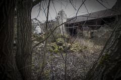_DSC0199 (Foto-Runner) Tags: urbex lost decay abandonné épave citroen ruine rouille mousse