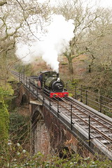 Onto the bridge (Sundornvic) Tags: steam trains locomotives welsh narrowgauge talyllyn woods forest trees green rail railway transportation heritage preservation wales snowdonia