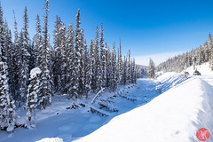 Roadtrip 19 (Kasia Sokulska (KasiaBasic)) Tags: canada alberta winter rockies travel mountains nature jasper np landscape