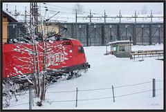 "Snowy Bush Taurus ("" Wiener Schule "") Tags: öbb oebb obb austria selzthal 1116 1016 taurus eisenbahn railway roundhouse shed drehscheibe turntable lokschuppen"