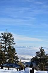 "Baker County Tourism – basecampbaker.com 51365 (TravelBakerCounty) Tags: ""anthonylakesmountainresort"" ""skiinginoregon"" ""bakercounty"" oregon ""easternoregon"" ""anthonylakes"" ""bakercountytourism"" ""basecampbaker"" ""oregonskiresorts"" ""elkhornmountains"" visitbaker snow winter wintersports"