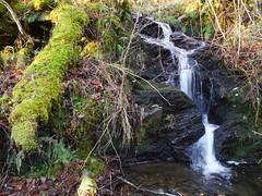 Glasdrum National Nature Reserve (Niall Corbet) Tags: scotland argyll glasdrum nationalnaturereserve nnr moss green waterfall