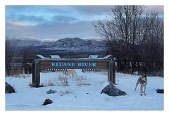 Kluane River (Robert Drozda) Tags: yukonterritory canada kluaneriveroverlook alaskarange nislingrange wesley sandy beingthere sign fbxtopdx2018 drozd