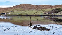 Bridgend (Life@60DegreesNorth) Tags: burra shetland bridgend