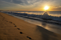 Footsteps by the Surf (Rob Shenk) Tags: loscabos mexico cabosanlucas beach waves sunrise pacific ocean beautifulcolors surf baja bajacalifornia water footsteps sand