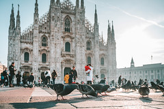 Birds | Milan Cathedral | Italy 2019 #40/365