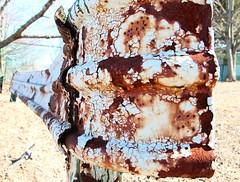 The Rust Factor (CaptJackSavvy) Tags: rust guardrail city peelingpaint rusty decay crackedpaint old rhodeisland