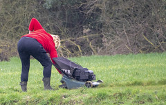 DSC_5064a (photographer695) Tags: scawby north lincolnshire lady red sweater cutting grass public right way used by dog walkers