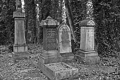 General Cemetery  Monochrome (brianarchie65) Tags: generalcemetery cemeteries hull geotagged brianarchie65 graves grave bucket litter trash rubbish tress ivy bushes headstones brokenheadstones kingstonuponhull cityofculture springbankwest lapollution unlimitedphotos ngc blackandwhite blackandwhitephotos blackandwhitephoto blackandwhitephotography blackwhite123 blackwhiterealms flickrunofficial flickr flickruk flickrcentral flickrinternational ukflickr eastyorkshire