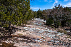 Bluffage at Rim Rock (ryancondronphotography) Tags: bluffage trees spring shawneenationalforest rimrock illinois nature places bluff junction unitedstatesofamerica us