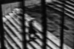 Gaget (photograph61) Tags: ombre scala astratto monocromatico