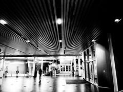 Planétarium Rio Tinto Alcan  (Montreal) (MassiveKontent) Tags: planetarium contrast noiretblanc blackwhite blancoynegro montreal bw city monochrome urban blackandwhite montréal quebec bwphotography android absoluteblackandwhite mono silhouette night nightshot cityatnight