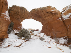 Broken Arch Snowstorm (xjblue) Tags: 2018 archesnationalpark newyearsweekend southernutah utah canyon canyonlands cold desert governmentshutdown sandstone snow trip winter natural span naturalarch redrock storm