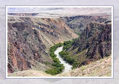 Colors of Sharyn (monorail_kz) Tags: kazakhstan centralasia zhetisu sharyn canyon river summer 2010 july rocks steppe prairie oasis landscape