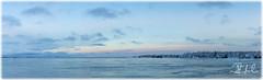 a new year dawns (D J England) Tags: lakehuron winter dawn canoneos5dmkiii lake thebruce pano brucepeninsula djenglandphotography sigma24105mmf4dgoshsma douglasjengland dje ontario southernontario djengland panorama tobermory haybay