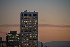 Coit Tower - 121818 - 03 - Hartford Building Viewed from Coit Tower (Stan-the-Rocker) Tags: stantherocker sony ilce sanfrancisco coittower telegraphhill northbeach financialdistrict street sel18135