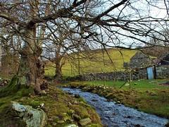 Country Life (Defabled) Tags: country rural gwynedd byrllysg