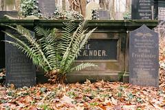 181214_000044 (Jan Jacob Trip) Tags: analog film weisensee berlin cemetery germany