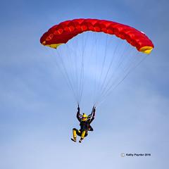 Coming in under control 7689 (kathypaynter.com) Tags: eloy eloyarizona eloyaz arizona az parachute parachutes jump jumper jumpers tandem tandemjump