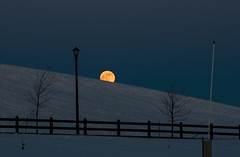 The moon, rolling down a snow covered hill. (googling2000g) Tags: edmonton alberta blood red moon 2019