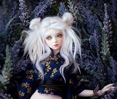Cloudy ☁️ (pure_embers) Tags: pure embers laura england resin bjd msd jid junior doll dolls iplehouse cordelia uk girl iplehousecordelia pureembers embersmisha misha photography photo ball joint white alpaca hair ghost eyes portrait flowers cloudy 14